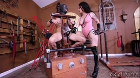 imagen FemDom Goddess Loves To Inflict Punishment